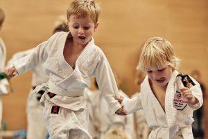 Proefles judo