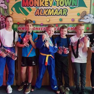 Monkeytownles Judo